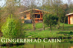 Luxury log cabin with hot tub in Northumberland pets welcome