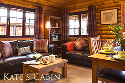 luxury northumberland log cabin with hot tub