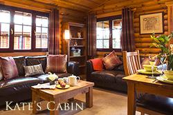 luxury northumberland log cabin with hot tub