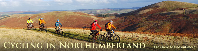 cycfle hire amble cycle routes in northumberland