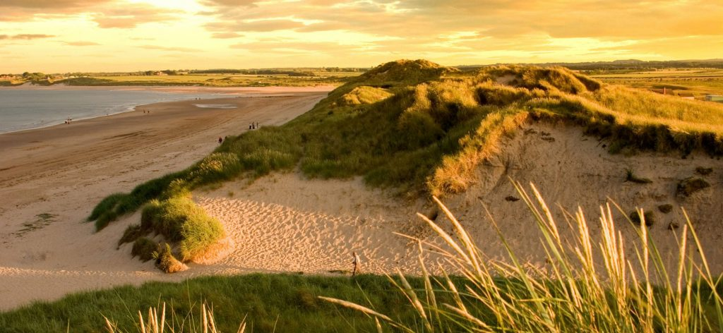 Image result for beadnell beach