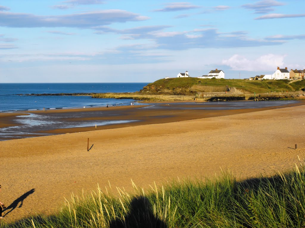 cottages-that_take_dogs_beach-northumberland