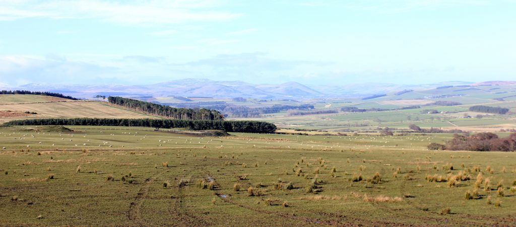 cottages_chatton_accepts_dogs_luxury_b&b_hotel, where to stay in Northumberland pet free